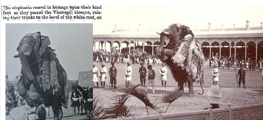 Name:  elefantes.jpg Views: 114 Size:  178.3 KB