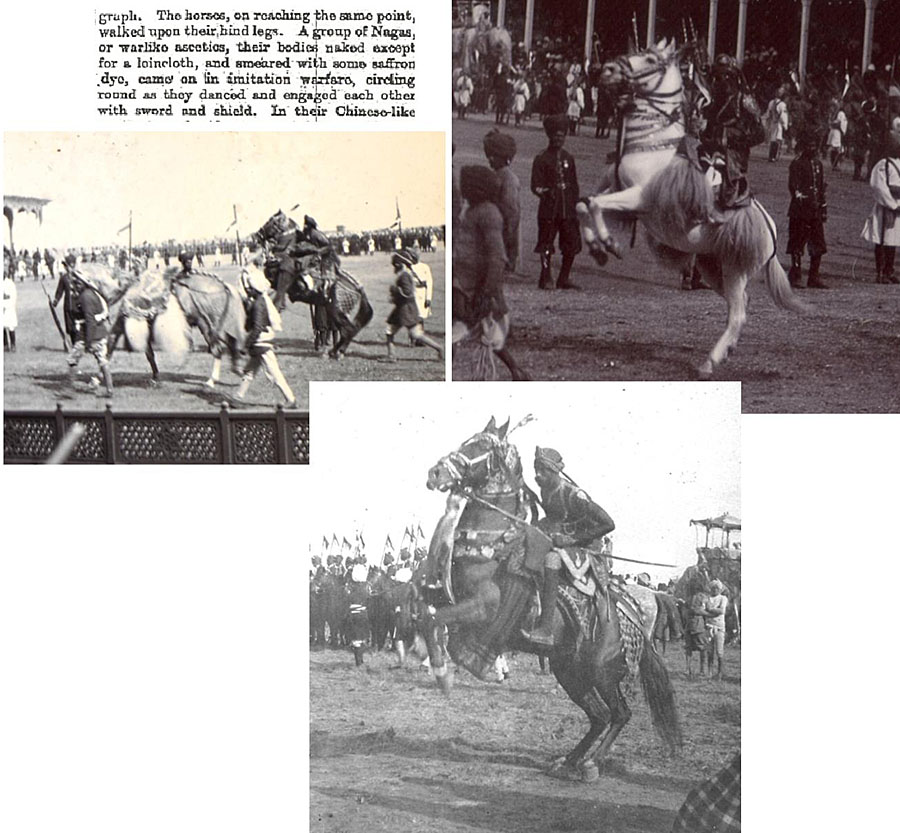 Name:  caballos.jpg Views: 115 Size:  177.1 KB