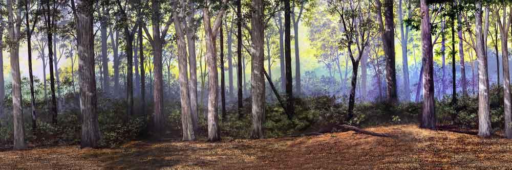 Name:  Woodlands.jpg Views: 789 Size:  49.8 KB