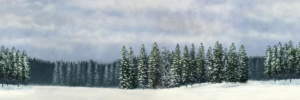 Name:  Snow.jpg Views: 839 Size:  72.1 KB